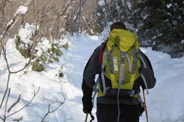 Choosing A Hiking Backpack